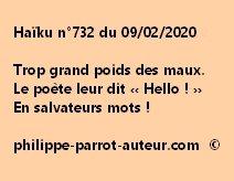 Haïku n°732 090220