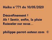 Haïku n°771 100520