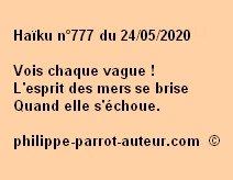 Haïku n°777 240520