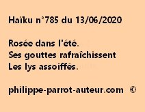 Haïku n°785 130620