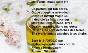 Mots crus, maux cuits 14