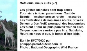 Mots crus, maux cuits 27