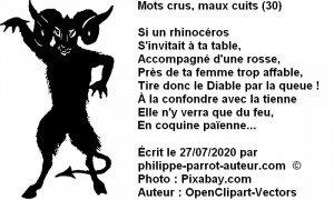 Mots crus, maux cuits 30