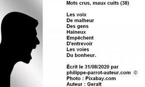 Mots crus, maux cuits 38