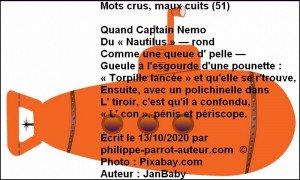 Mots crus, maux cuits 51 a