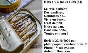 Mots crus, maux cuits 53