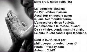 Mots crus, maux cuits 56