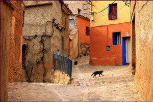 442 - Quand le chat s'en va