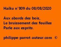 Haïku n°809 080820