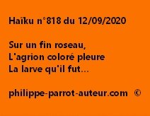 Haïku n°818 120920