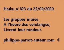 Haïku n°823 250920