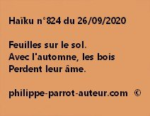 Haïku n°824 260920