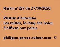 Haïku n°825 270920