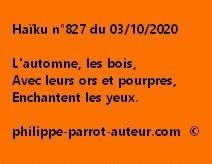 Haïku n°827 031020