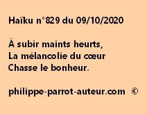 Haïku n°829 091020