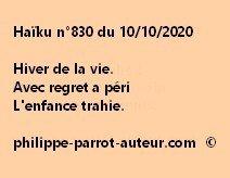 Haïku n°830 101020 a