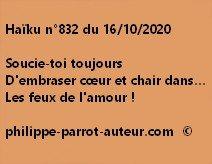Haïku n°832 161020