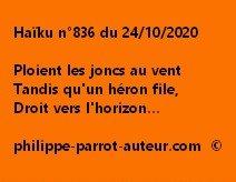 Haïku n°836 241020