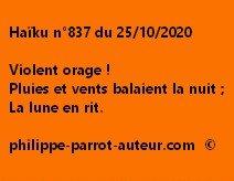 Haïku n°837 251020