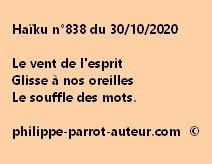 Haïku n°838 301020
