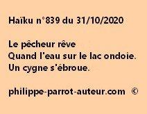 Haïku n°839 311020