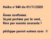 Haïku n°840 011120