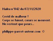 Haïku n°842 071120