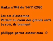 Haïku n°845 141120