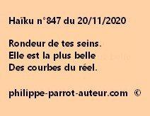 Haïku n°847 201120 a
