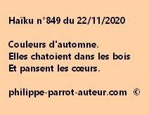 Haïku n°848 221120