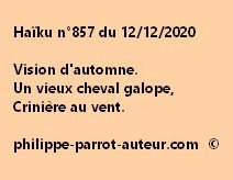 Haïku n°857 121220