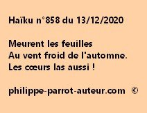 Haïku n°858 131220