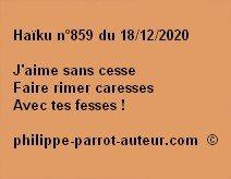 Haïku n°859 181220