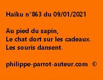 Haïku n°863 090121