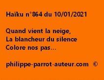 Haïku n°864 100121
