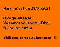 Haïku n°871 290121
