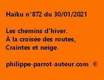 Haïku n°872 300121