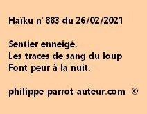 Haïku n°883 260221 a