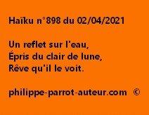 Haïku n°898 020421
