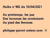 Haïku n°902 100421