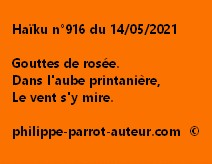 Haïku n°916 140521