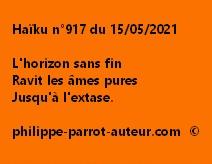 Haïku n°917 150521