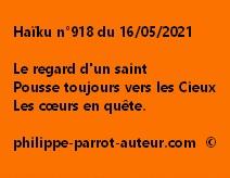 Haïku n°918 160521