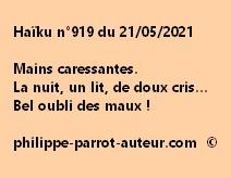 Haïku n°919 210521