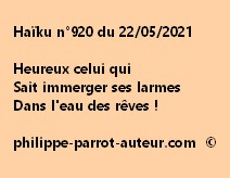 Haïku n°920 220521