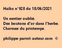 Haïku n°928 180621 a
