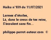 Haïku n°939 110721