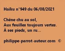 Haïku n°949 060821
