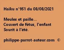 Haïku n°951 080821