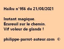 Haïku n°956 210821